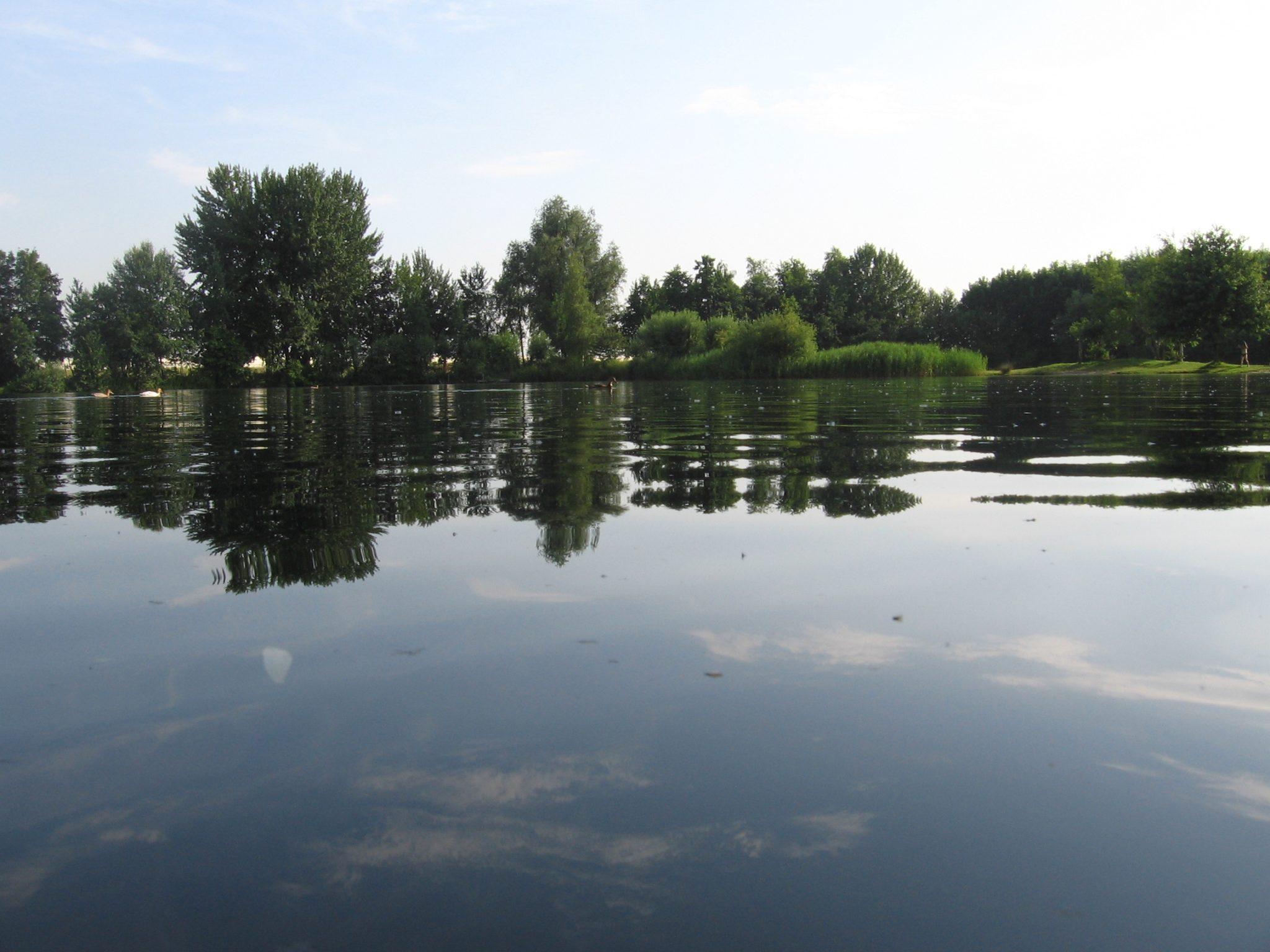 in-den-boomgaard